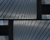 Kivisto-Alex-Twined