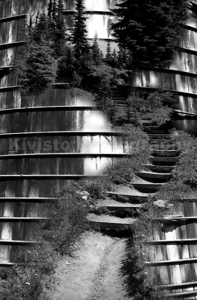 Kivisto-Stepping-Up-to-Nature