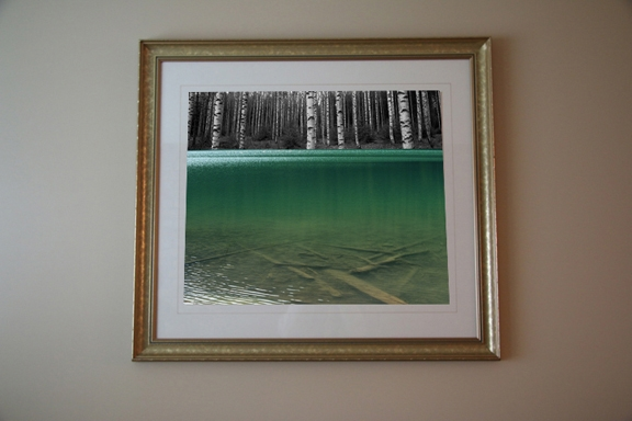 Joffre-meets-Fin-Forest-Framed