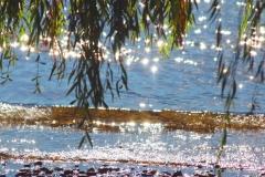 Kivisto OK Waves Hue Saturation