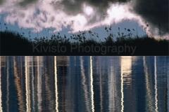Kivisto-Twilight-Reflections